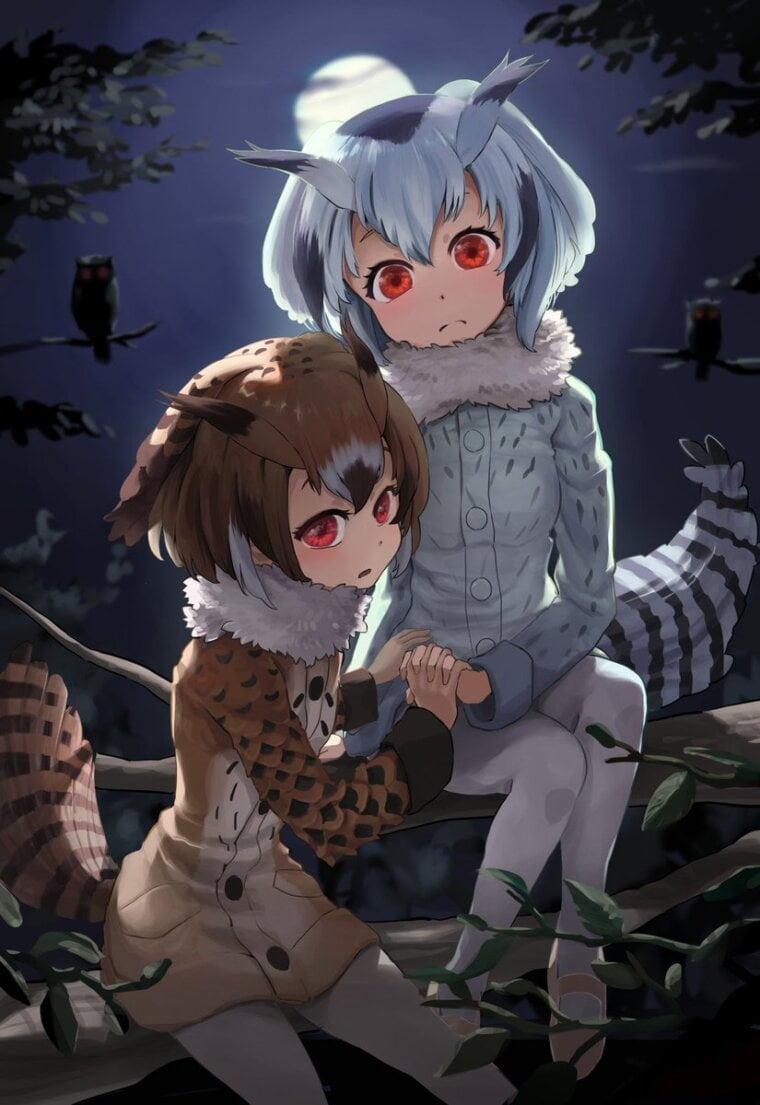 【けものフレンズ】アフリカオオコノハズクとワシミミズク